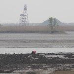 Yalu River Estuary Coastal Wetland