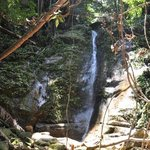 waterfall on the jungle trek