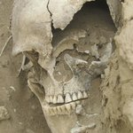human skull at a burial ground