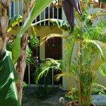 Garden view - room 34