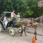Es un placer recorrer las calles en sus carruajes tirados por caballo