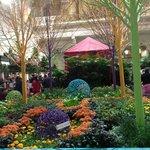 Macy's Grand Court - Flower Show
