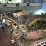 Tyrannosaurus Rex animatronic exhibit