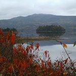 Crimson Frame - Swift Current Harbour in Autumn