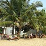 having coffee under the coconut trees