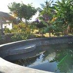 la piscine raffraichissante, pour finir en sieste sous la Rancheta (à l'arrière)
