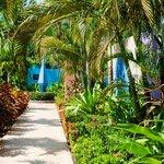 Lush, tropical gardens surround you as you walk through Alma