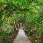 Khao Noi Public Park