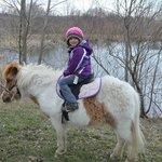 A pony ride around the pond