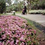 Foto de Xiamen Nanhu Park