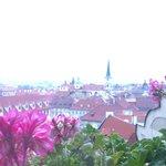 部屋から見えるプラハの町並み