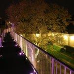 The walkway at night
