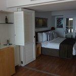 Zimmer BC 0209