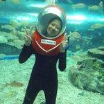 Aquanaut Foto