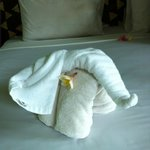 Cute elephant towelss