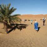 point de départ pour une promenade en dromadaire dans le désert