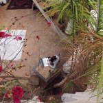 Riad Miski from the Balcony