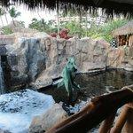 One of the many pools surrounding Humuhumunukunukuapua'a restaurant