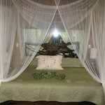 Hidden Canopy Room Bed