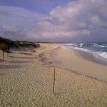 Palapa y arena alanca