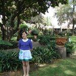 More garden shots
