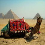 Tut Travels Egypt Day Tours Photo