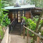 Our Banana Tree Cottage