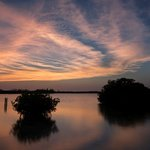 Small mangrove islands at sunset