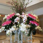 Another beautiful flower arrangement - in the lounge/bar