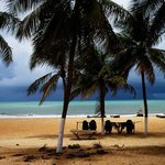 Carnaubinha beach