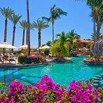 Cactus Spa Foto