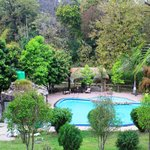 View of swimming pool (the best place)