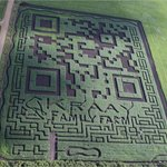 The Amazing Field Maze