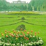 Green World Foto