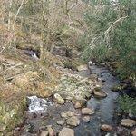 Mountain stream in Eskdale