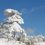 Jiaozi Snow Mountain