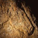 Le Cheval de Commarque. Grotte ornée-14000 ans.