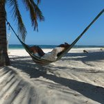 free hammocks to use on deserted beach