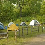 Group Tenting Area
