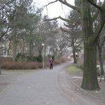 Little Tiergarten Park opposite