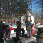 En mars, le parc ouvre sa cabane à sucre