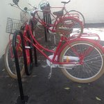 hotels bicycle rentals