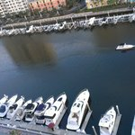 looking down at the marina