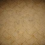 Carpet in room.