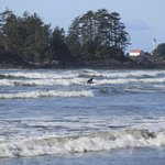 Surfers at Chesterman Beach—great for people watching