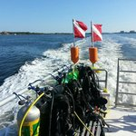 Calypso Dive Charters
