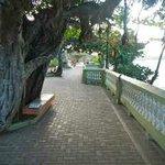 Malecon - Promenade in Esperanza