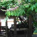 Photo of Chiangmai Moli Boutique Hostel