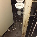 horseshoe gents toilet