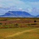 View of Table Mountain from the guesthouse